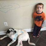 Mi hijo pinta en las paredes ¿Qué hago?
